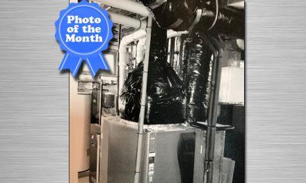 November 2017 Photo of the Month Winner
