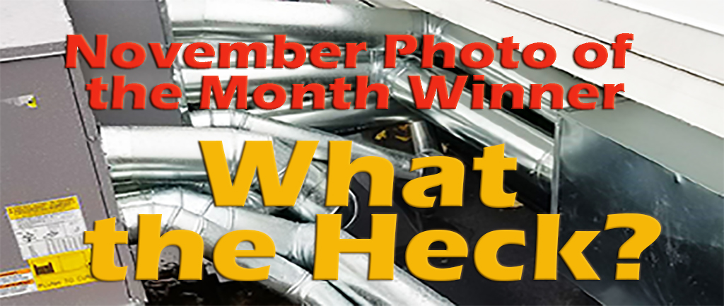 November 2018 Photo of the Month Winner