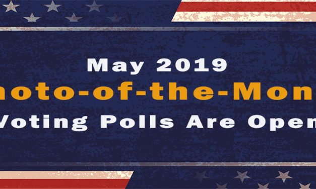 The Polls Are Open!