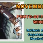 November 2019 Photo-of-the-Month Winner