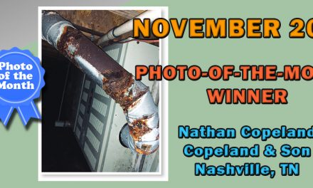 November 2019 Photo-of-the-Month Winner