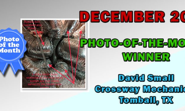 December 2019 Photo-of-the-Month Contest Winner