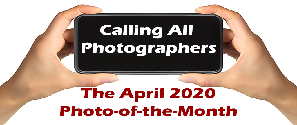 April 2020 Photo of the Month Call Entries