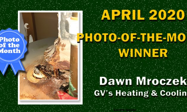 April 2020 Photo-of-the-Month Winner