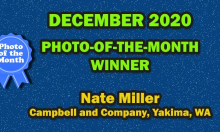December 2020 Photo-of-the-month Winner