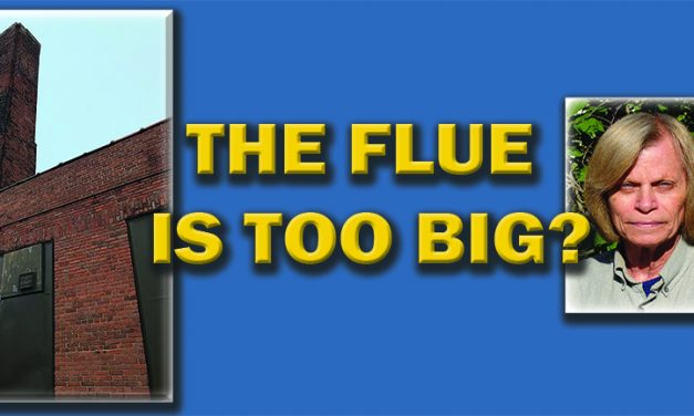 The Flue is TOO Big?